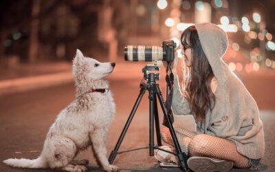 Som single kvinde kan du have stor glæde af en hund