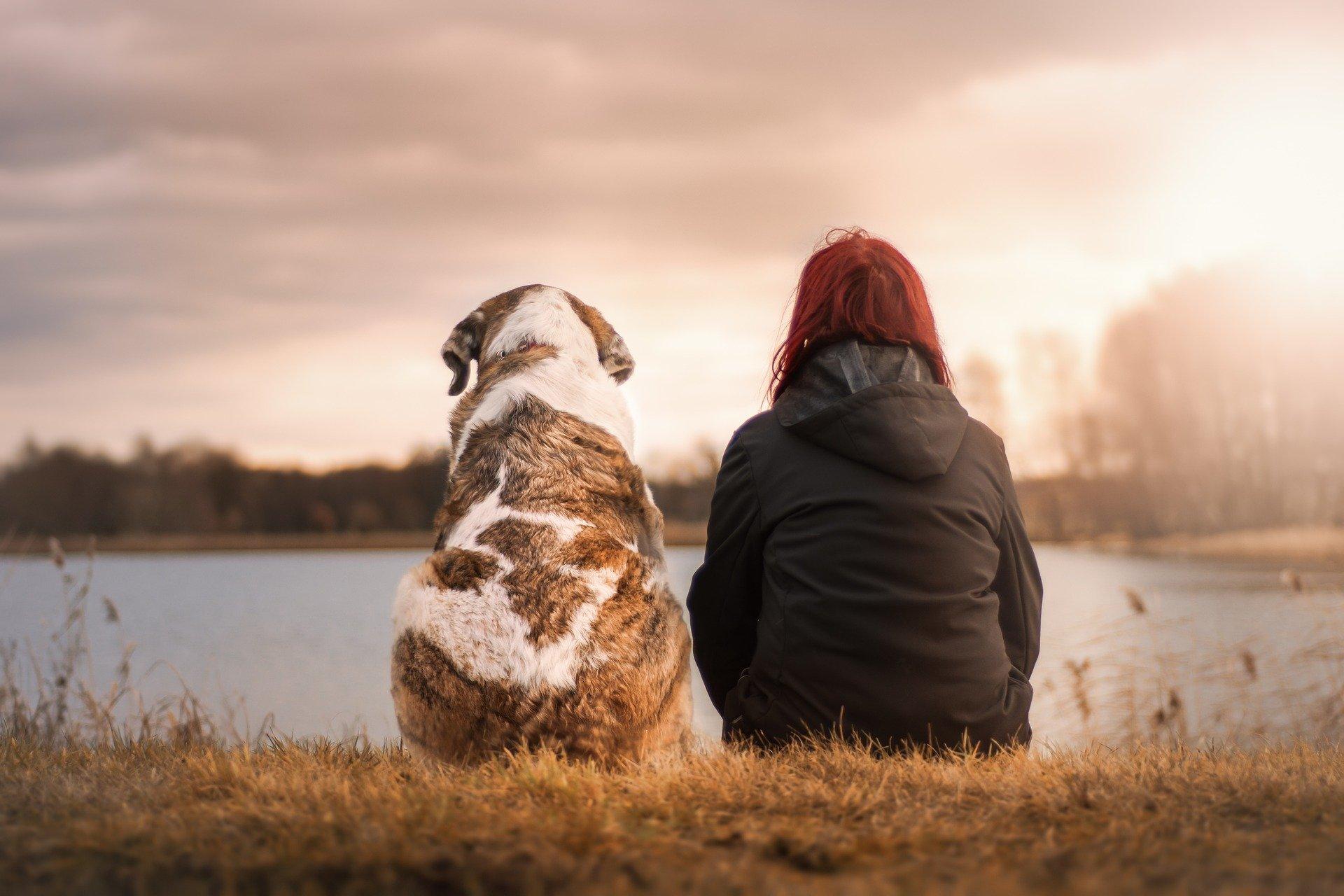 kvinde sidder med en hund